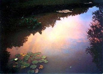 HOME ~ Sunset in Pond